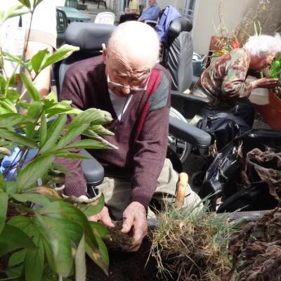 atelier jardinage juillet 2016 003