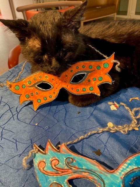 Chat carnaval 2