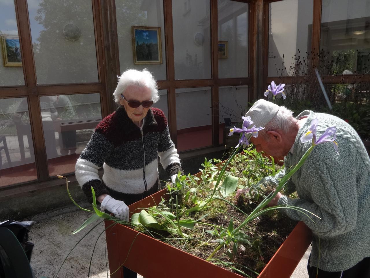 Jardinage for Jardin therapeutique