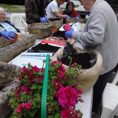 jardinage avril17 003