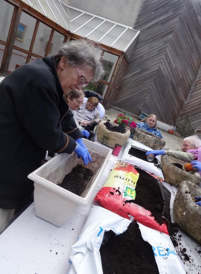 jardinage avril17 006