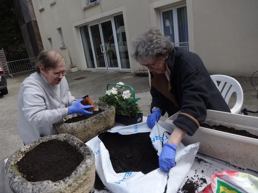 jardinage avril17 010